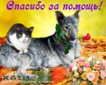 Благодарим Людмилу Семеновну Тамбовцеву