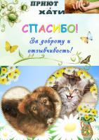 "Большое спасибо коллективу Ассоциации ""ВЕРСИВО"""